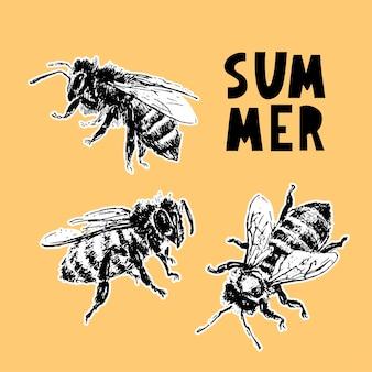 Hand getekende bij schets zwarte honing vectorillustratie