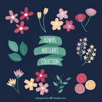 Hand getekende bloemen en bladeren verzamelen