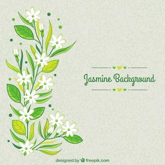 Hand getekende bloemenachtergrond met jasmijn
