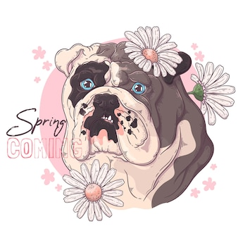 Hand getekende bulldog met bloemen