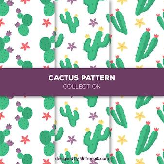Hand getekende cactus patronen