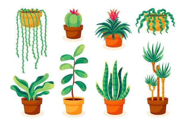 Hand getekende kamerplant collectie geïllustreerd Gratis Vector