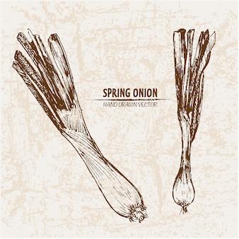 Hand getekende lente-ui collectie