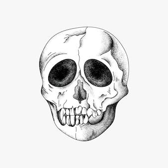 Hand getekende schedel