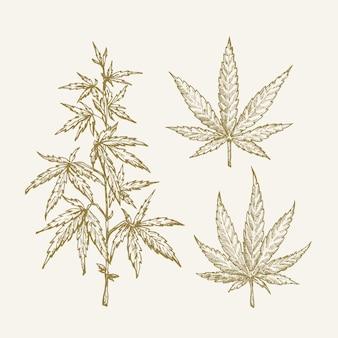 Hand getekende vector cannabis hennep tak met bladeren schets sillhouettes set geneeskunde kruid doodles col...