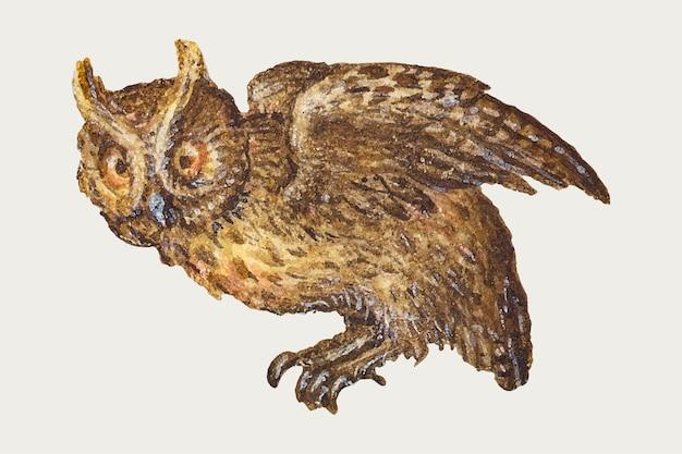 Hand getekende vintage vector uil vogel