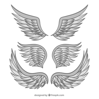 Hand getekende vleugels van grijze kleur
