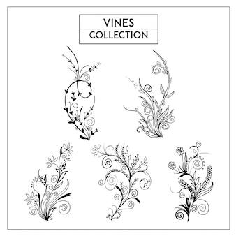 Hand getekende zwart-wit wijnstokken collectie
