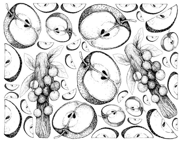 Hand getrokken achtergrond van chinese peer en davidson-pruimen