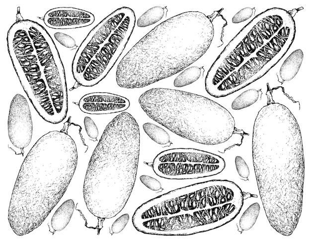 Hand getrokken achtergrond van verse cassabanana-vruchten
