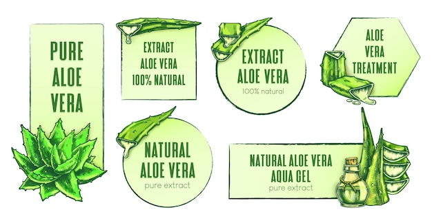 Hand getrokken aloë vera etiketten vector set