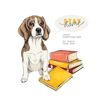 Hand getrokken beaglel hond zit met boeken en een notitieboekje.