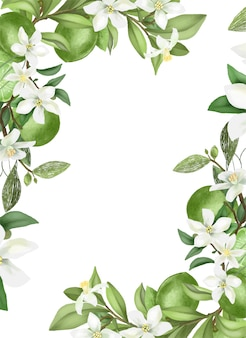 Hand getrokken bloeiende lindeboomtakken, bloemen en limoenen.