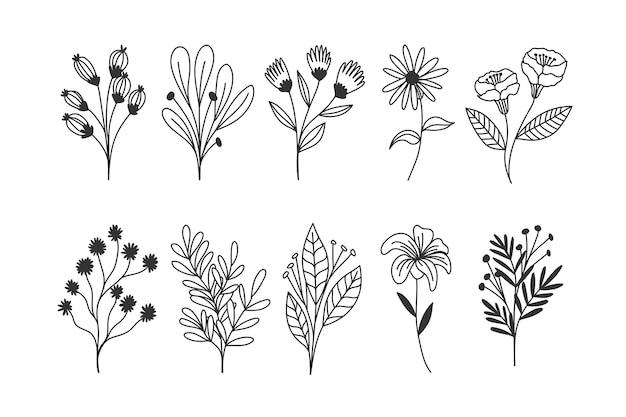 Hand getrokken bloemen collectie