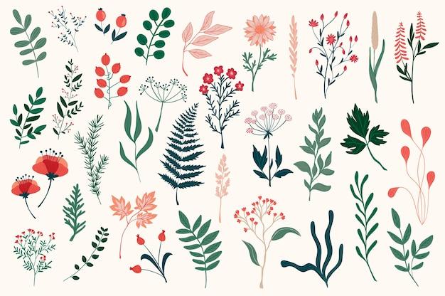 Hand getrokken bloemen decoratieve elementen, bladeren, bloemen, kruiden en takken botanische doodles set