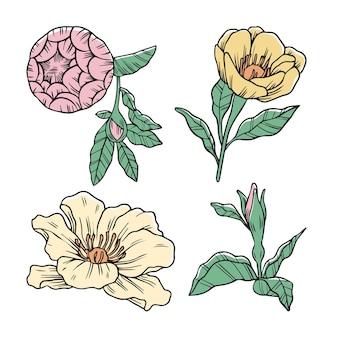 Hand getrokken bloemen pack