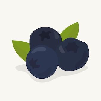 Hand getrokken bosbes fruit illustratie