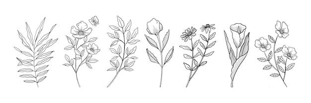 Hand getrokken botanische bloemen set
