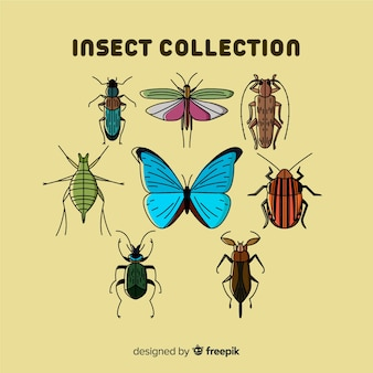 Hand getrokken bugs collectie