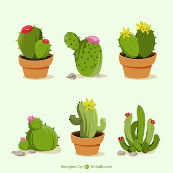 Hand getrokken cactus cartoons
