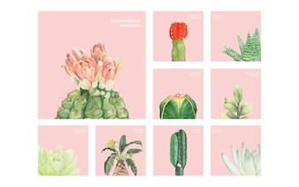 Hand getrokken cactus en vetplanten