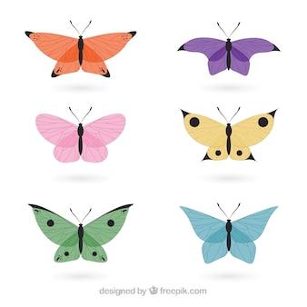 Hand getrokken delicated vlinders in kleuren