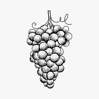 Hand getrokken druiven logo ontwerp inspiratie