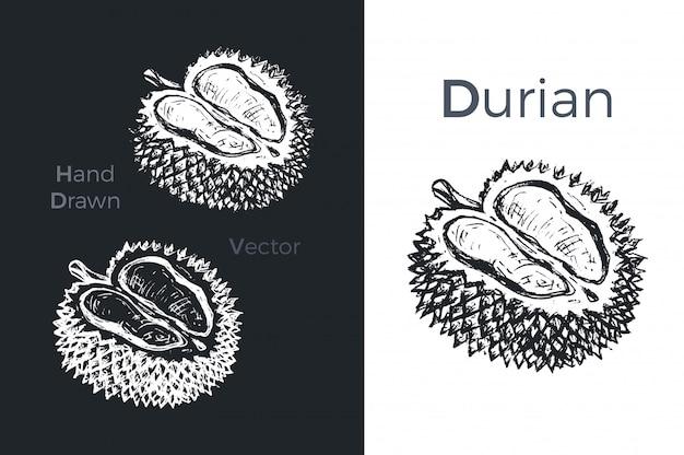 Hand getrokken durian pictogrammen.
