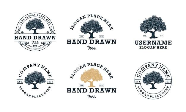 Hand getrokken eiken logo's klassieke boom logo ontwerpsjablonen