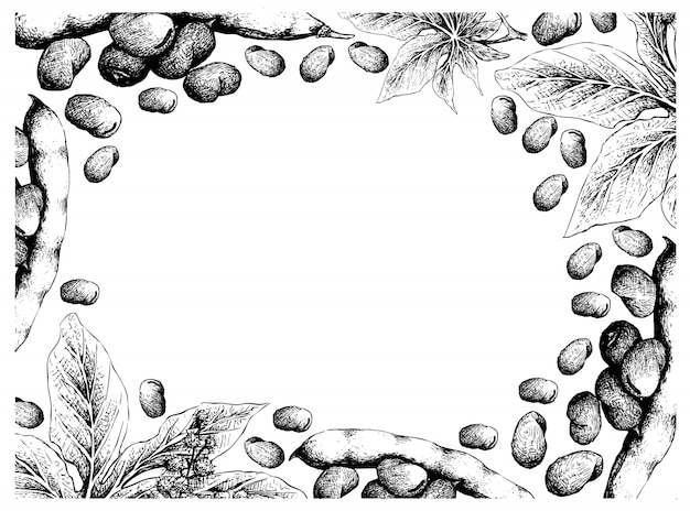 Hand getrokken freame van tuinbonen en ricinusbonen