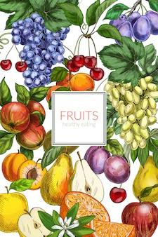 Hand getrokken fruit illustratie