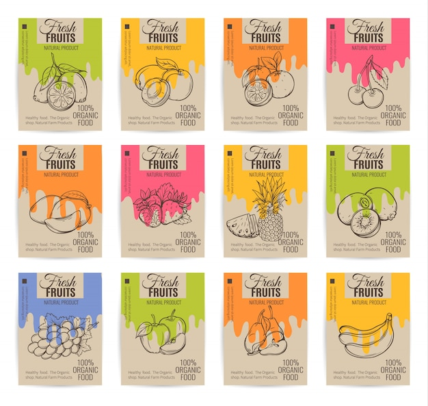 Hand getrokken fruit posters set.