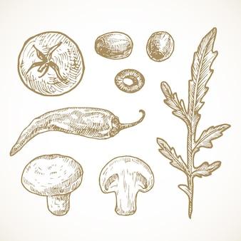 Hand getrokken groenten en kruiden vector illustraties collectie. tomaat, olijven, paprika, champignons en rucola schetsen set. natuurvoedingskrabbels. geïsoleerd.