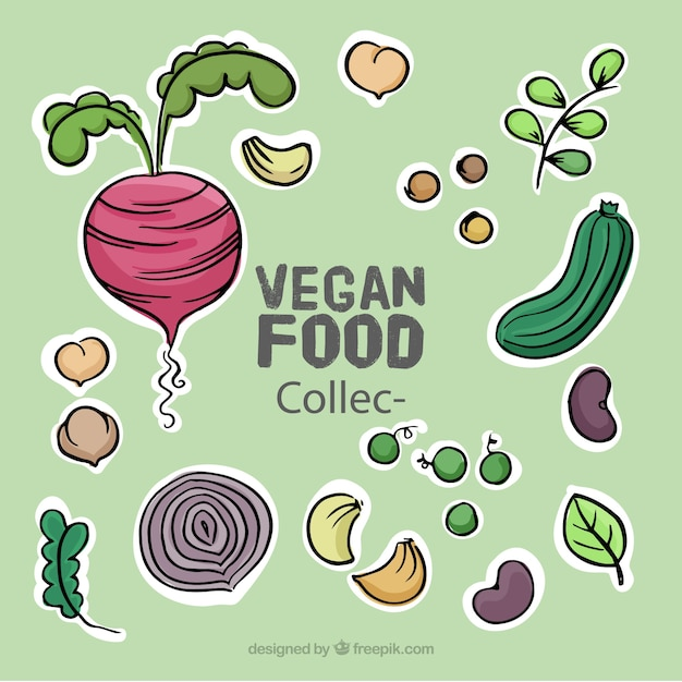 Hand getrokken heerlijk veganistisch eten set