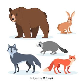 Hand getrokken herfst bos dieren collectie