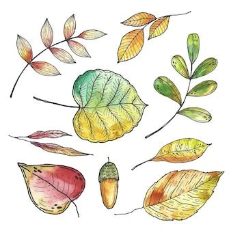Hand getrokken herfstbladeren instellen