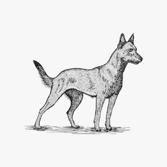Hand getrokken hond logo ontwerp illustratie