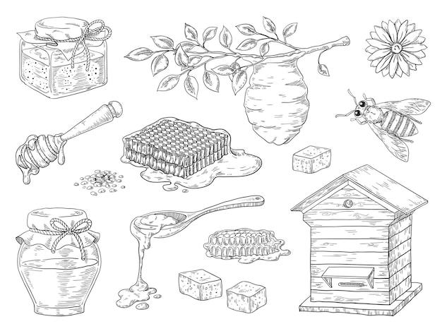 Hand getrokken honing. vintage bijen honingraat en honingpot schetselementen, doodle bloemen en bijenwas.