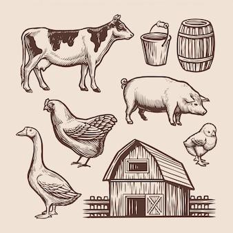 Hand getrokken illustartion van landbouwbedrijfelement