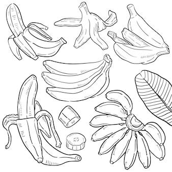 Hand getrokken illustratie van banaan.
