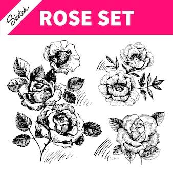 Hand getrokken illustraties van rozen