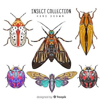 Hand getrokken insectencollectie