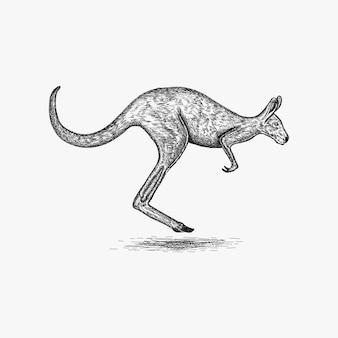 Hand getrokken kangoeroe-embleemontwerpinspiratie