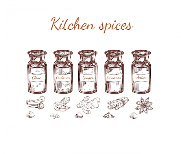 Hand getrokken keuken specerijen set