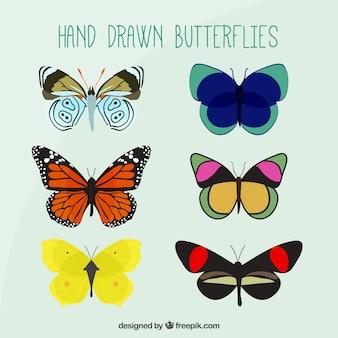 Hand getrokken kleuren vlinders pak