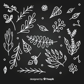 Hand getrokken kleurloze florale decoratie-elementen