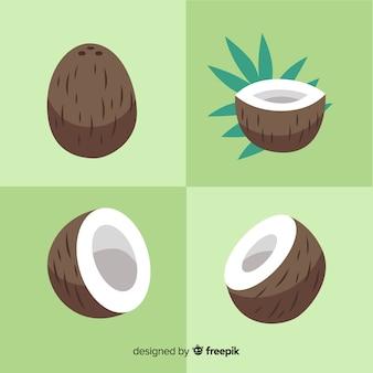 Hand getrokken kokosnoot collectie