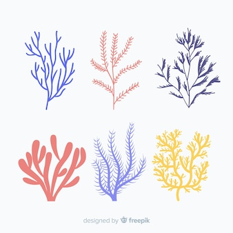 Hand getrokken koraal pack