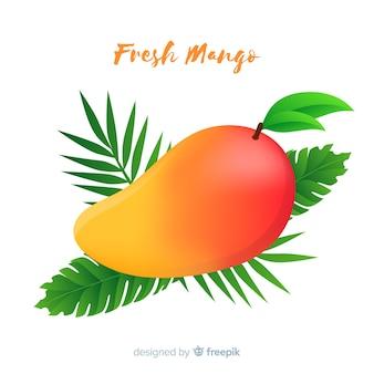 Hand getrokken mango illustratie