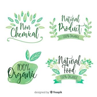 Hand getrokken natuurlijke voedseletiketinzameling